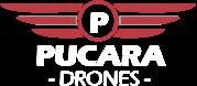 PUCARA DRONES